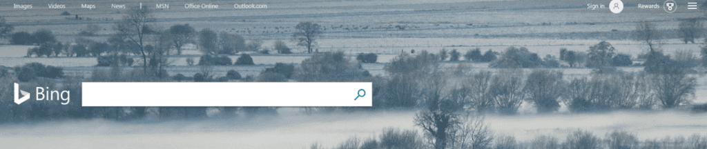 Bing Search bar - EWR Digital